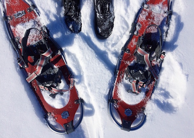 des chaussures et des raquettes de neige