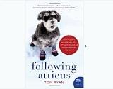 Following Atticus de tom ryan