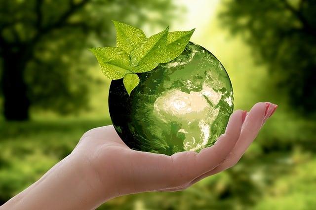 photo de recyclage