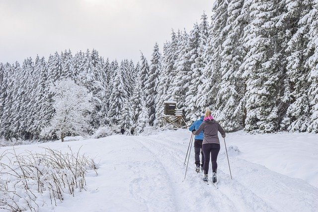 deux skieurs de fond dans la neige